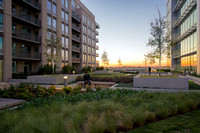IBM Rooftop Terrace | McKnight Landscape Architects