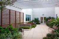 St. James Parish Hospital Healing Garden | McKnight Landscape Architects