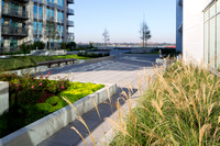 Louisiana IBM Rooftop Terrace | Landscape Architecture Photographer Mark Bienvenu