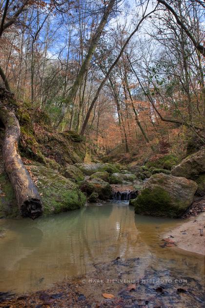 IMAGE: http://www.msbphoto.com/img/s6/v5/p819246433-4.jpg