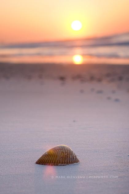 IMAGE: http://www.msbphoto.com/img/s7/v8/p788994885-4.jpg